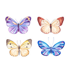 watercolor butterflies vector image vector image