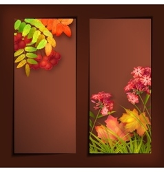 Autumn Fall Leaves Banners vector image vector image