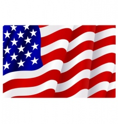 flag of united states of America vector image