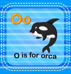 Flashcard letter o is for orca vector