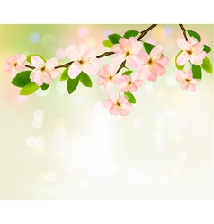 Spring background with blossoming tree brunch with vector image vector image