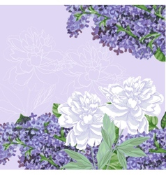 Background with lilac and white peonies vector