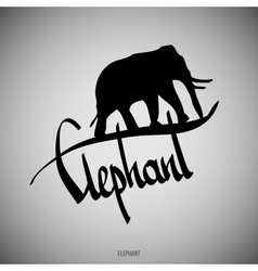 Elephant Calligraphic elements vector image