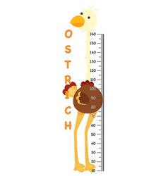 meter wall with ostrich vector image vector image