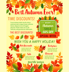 Autumn fall maple leaf acorn sale poster vector
