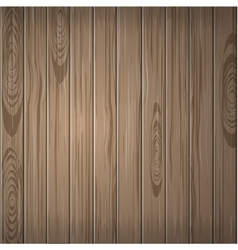 Wooden plane texture nature vector image