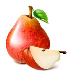 Ripe red pears with leaf vector