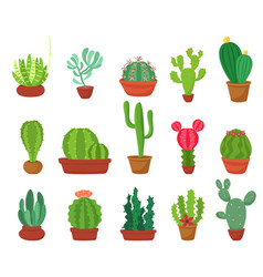 cactus flat style vector image