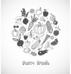card with doodle fruits and vegetables on white vector image vector image