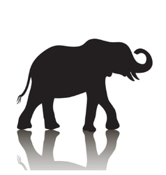 Elephant silhouette with shadow vector