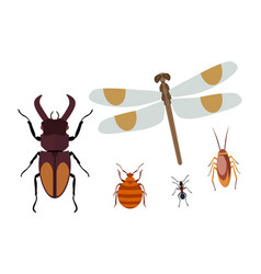 insect icon flat isolated nature flying butterfly vector image vector image