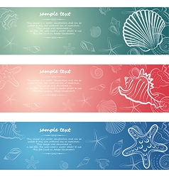 seashell card7 vector image