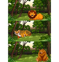Wild animals in the jungle vector