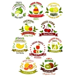 Fresh fruits retro icons for agriculture design vector image vector image