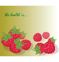 Fresh healthy red raspberry background vector