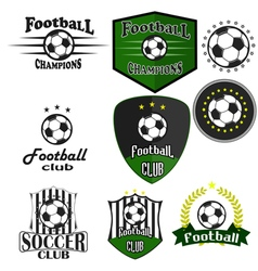 Professional sports logo football vector image