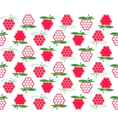 raspberry background vector image