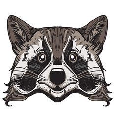muzzle raccoon for creating sketches of tattoos vector image