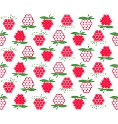 Raspberry background vector
