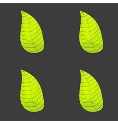 Leaf seamless textures vector