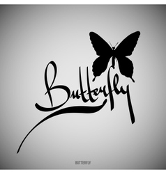 Butterfly calligraphic elements vector