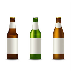 Collection different bottles of beer template vector
