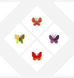 Flat butterfly set of beauty fly moth violet vector