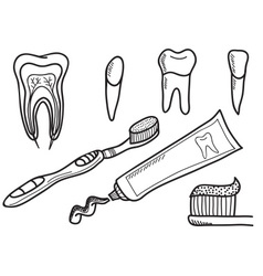 Set of tooth brushing icons vector