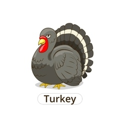 Turkey animal cartoon for children vector