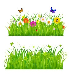 flowers and insects vector image