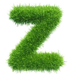 small grass letter z on white background vector image vector image