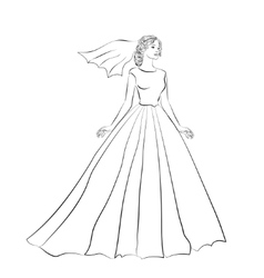 The bride in a wedding dress vector image