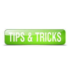 Tips tricks green square 3d realistic isolated vector