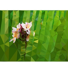Low poly geometric of Plumeria flower vector image vector image
