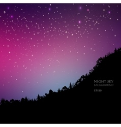 Pine trees on mountain sky night vector