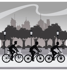Silhouette group younger riding bycicle park city vector