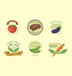 Vegetables label template icon vector