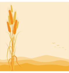 Golden wheat ears on autumn background vector