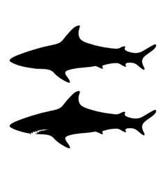Silhouette shark set vector image