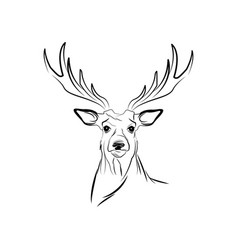 Free spirit deer animal bohemic design vector