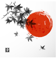Japanese maple leaves and red sun vector