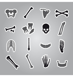 Human bones stickers set eps10 vector