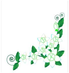 Background Jasmine flower vector image