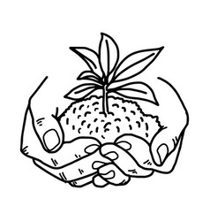 Growing plant with soil in hands vector