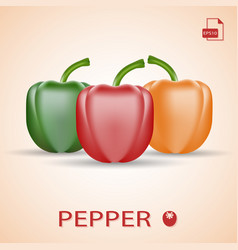 set of three fresh sweet peppers green red and vector image vector image