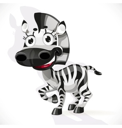 Cute baby zebra vector