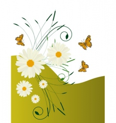 Daisies and butterflies vector