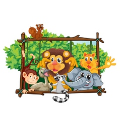 Zoo animals vector image