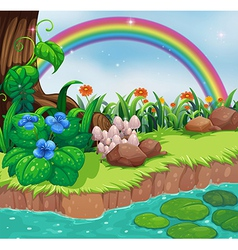 A riverbank with flowers and a rainbow vector