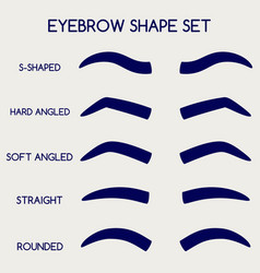 female eyebrows shape set vector image